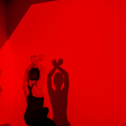 São Paulo Companhia de Dança apresenta A quadratura do círculo no Espaço Cultural Porto Seguro