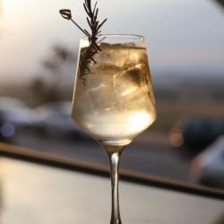 Festivais de Drinks- Dos clássicos aos autorais